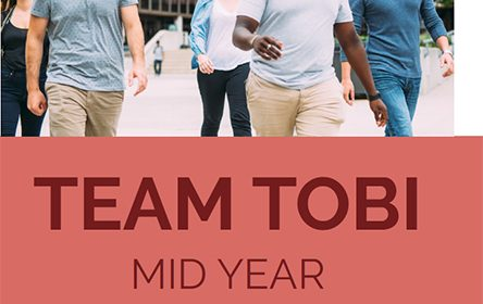 Team Tobi Mid Year Platform Review